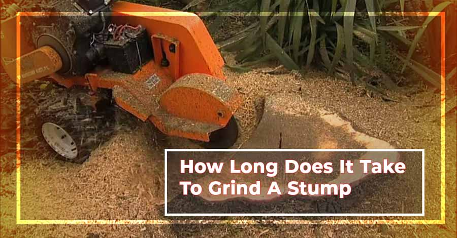 how long does it take to grind a stump