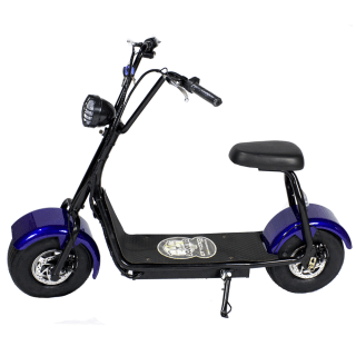 Citycoco Mini scooter 1000W