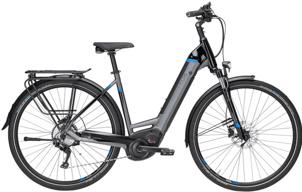 Pegasus Premio Evo 10 e Bike Review