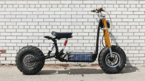 The Daymak Beast off road electric bike with built in solar recharging.
