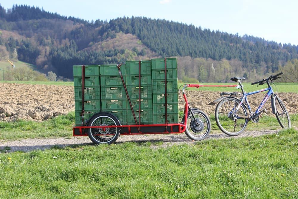 carla cargo bike (1)