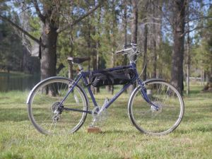 Leed 250 watt electric bike kit review