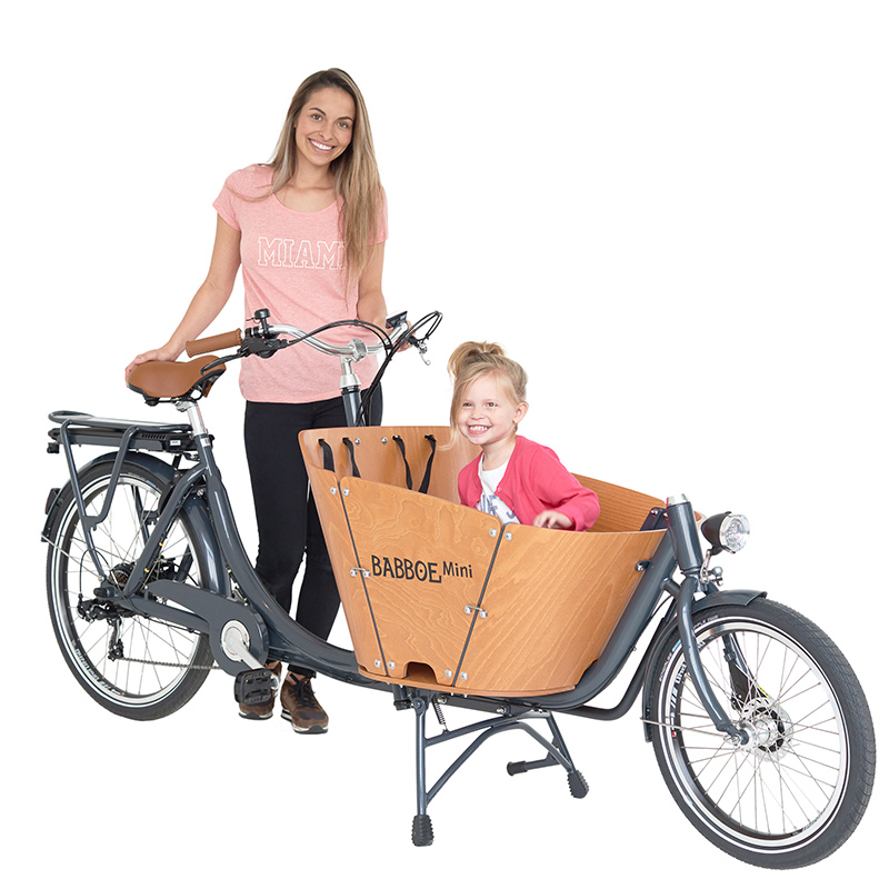 heavy duty electric cargo bikes trikes guide videos. Black Bedroom Furniture Sets. Home Design Ideas