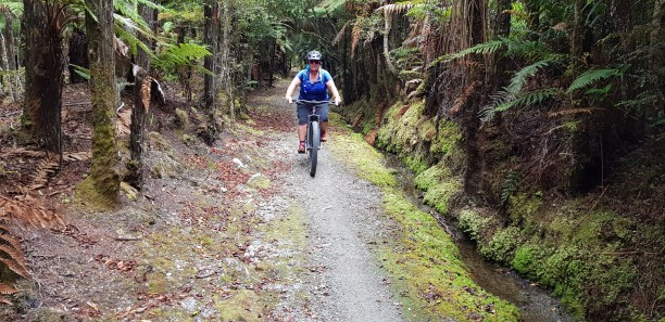 Riding along the Mananui Tramline track is a highlight