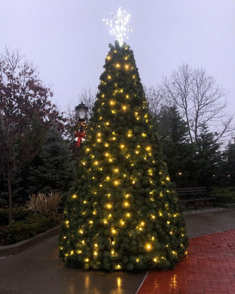 Mastic-Shirley Christmas tree