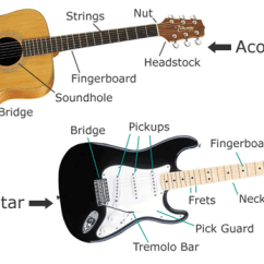 Guitar Parts Diagram Dodge Journey Wiring Bass String Great Installation Of Electric Strings Diagrams Source Rh 14 8 Ludwiglab De 4