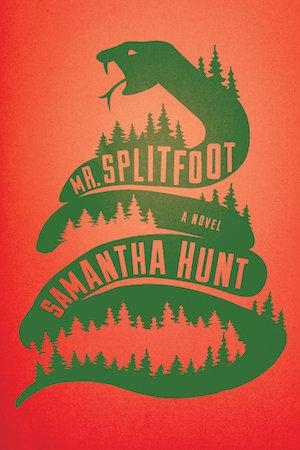 Image result for mr splitfoot samantha hunt
