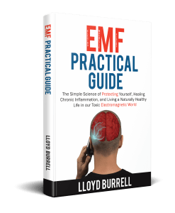 Emf Practical Guide  Image of emf practical guide scaled 1 247x300
