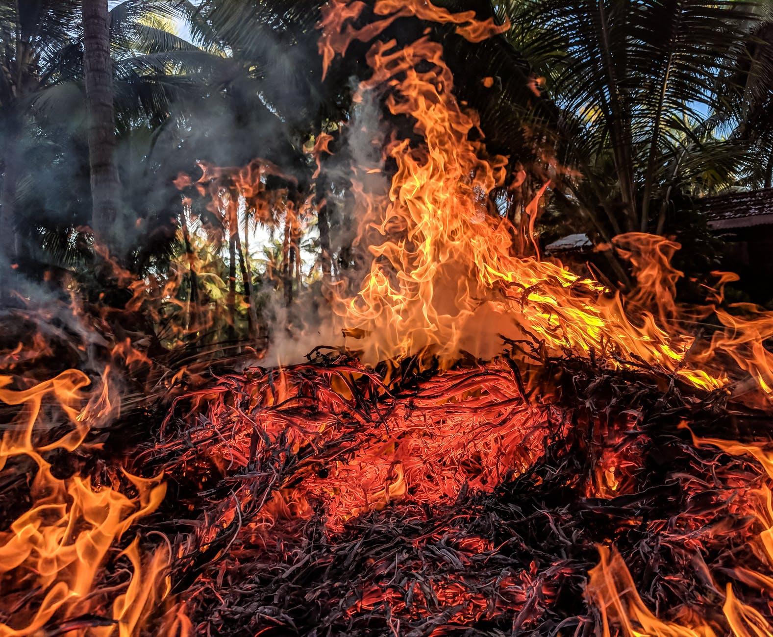 Biomass burning
