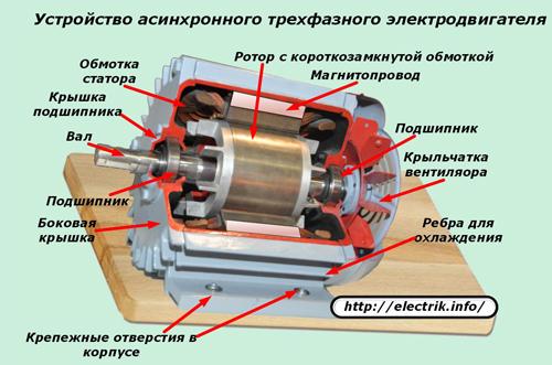 Das Gerät eines asynchronen dreiphasigen Elektromotors