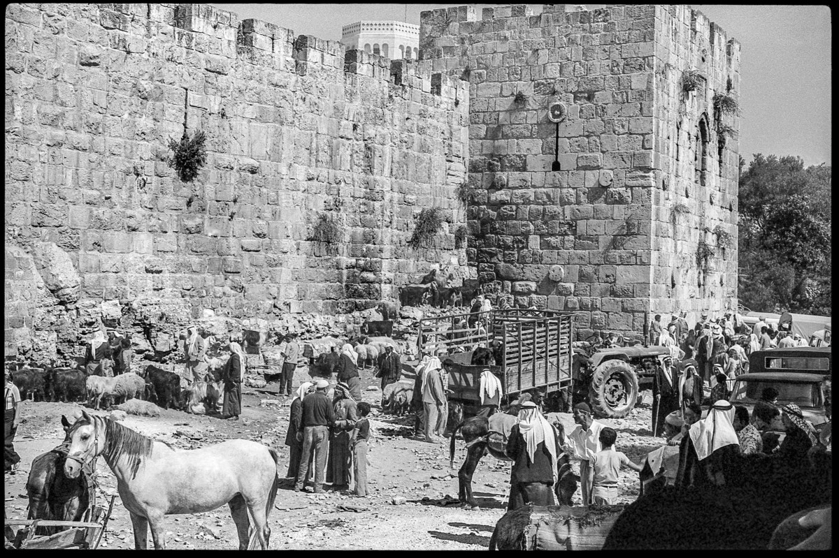 People, horses and livestock milling around in front of Old City gate