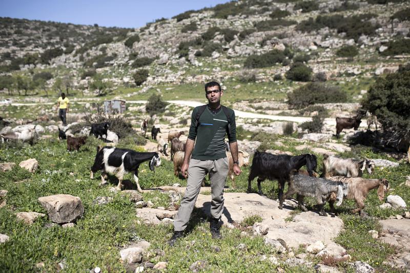 Two men herding goats