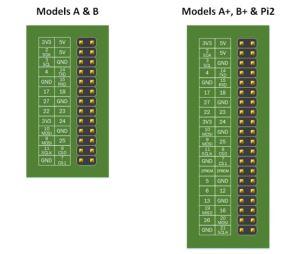 الشّكل (5): ترتيب الأقطاب على لوح الراسبيري باي