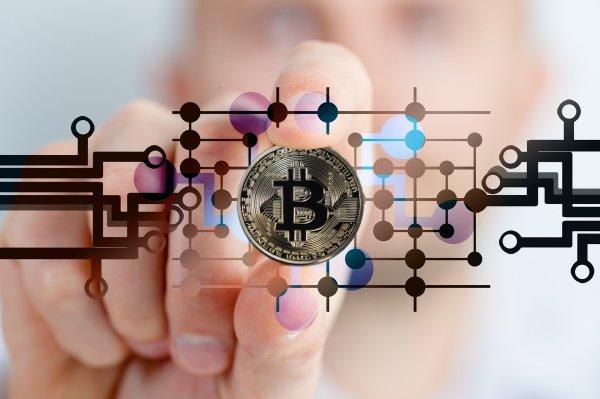 image de bitcoin, monnaie tenue entre les doigt