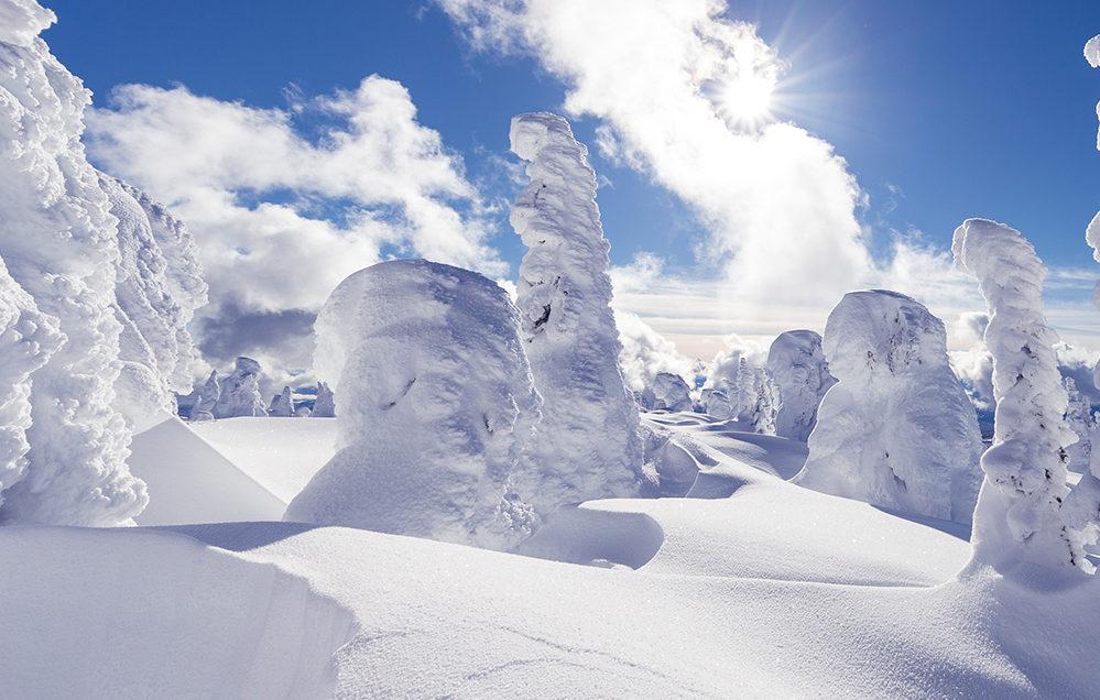 canada  snow ile ilgili görsel sonucu