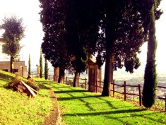 Montevecchia6