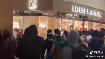 Louis-Vuitton_Looting USA