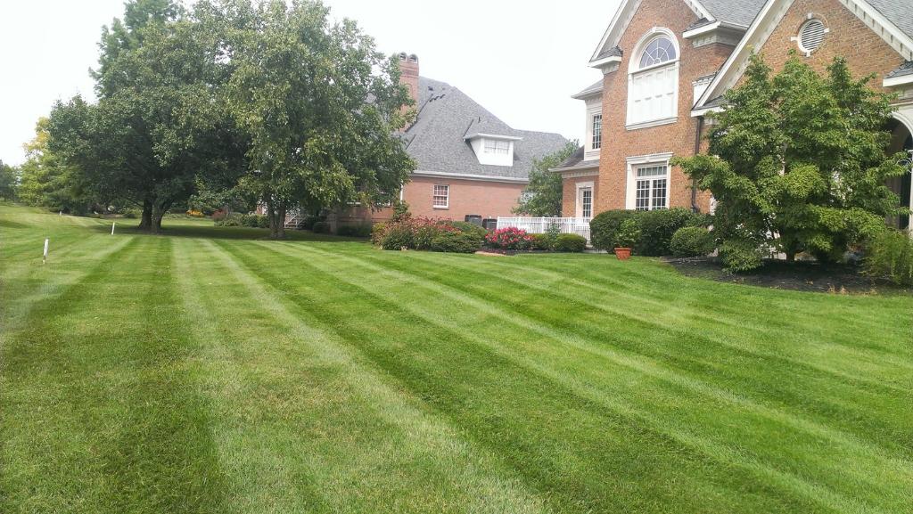 Gallery  Elegant Lawn Services