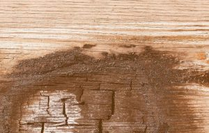 How to fix water damaged swollen outdoor wood furniture