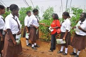 St Angela Nguviu High School