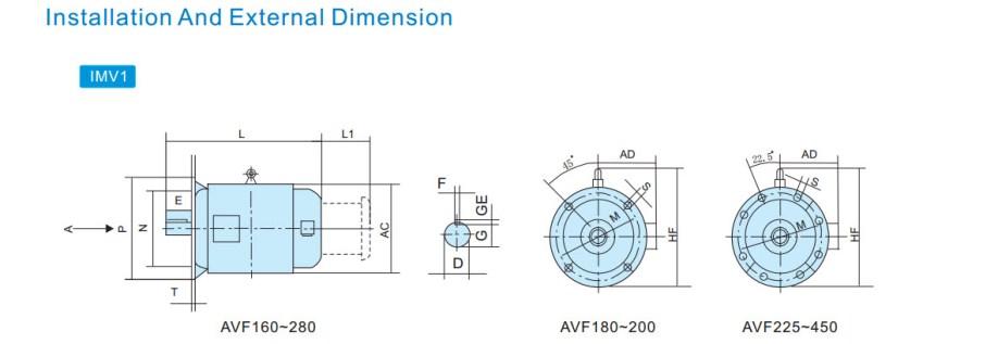 AVF 13