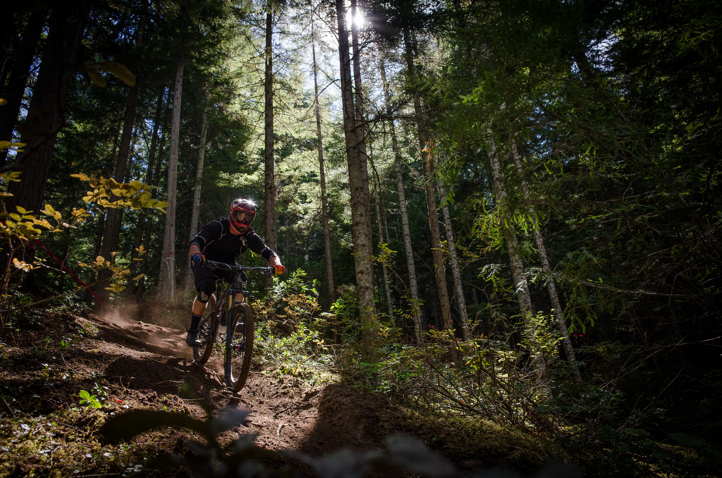 A racer practicing Stage 1 of the 2015 Enduro World Series at Whistler in British Columbia. Photo: Max Whittaker/Element.ly.