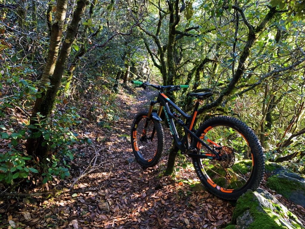 Mountain Bike Mayhem