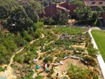 Permaculture Vegetable Garden Design