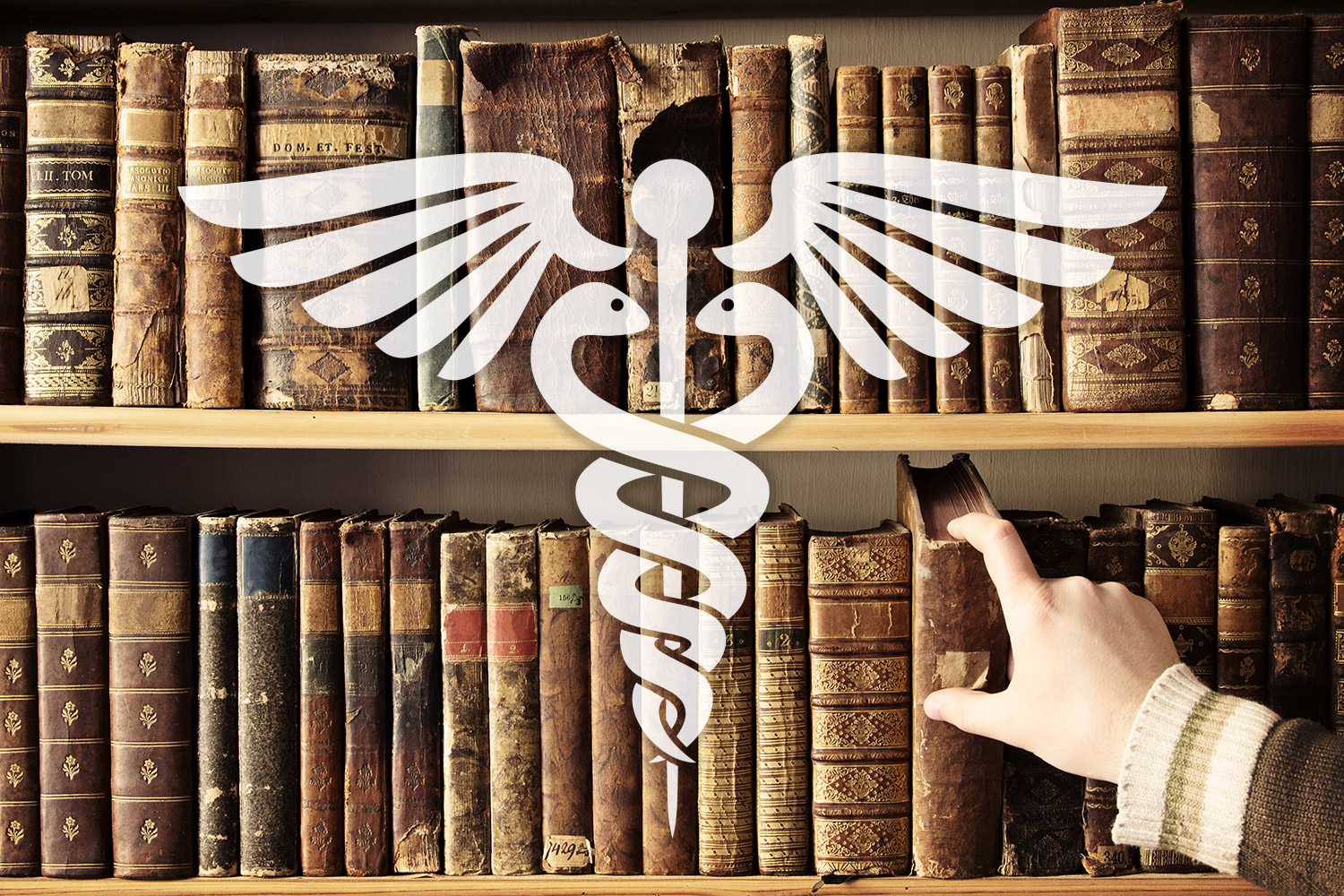 The Prepper's Library Series: Medical Books for the Prepared   Element  Bushcraft & Survival