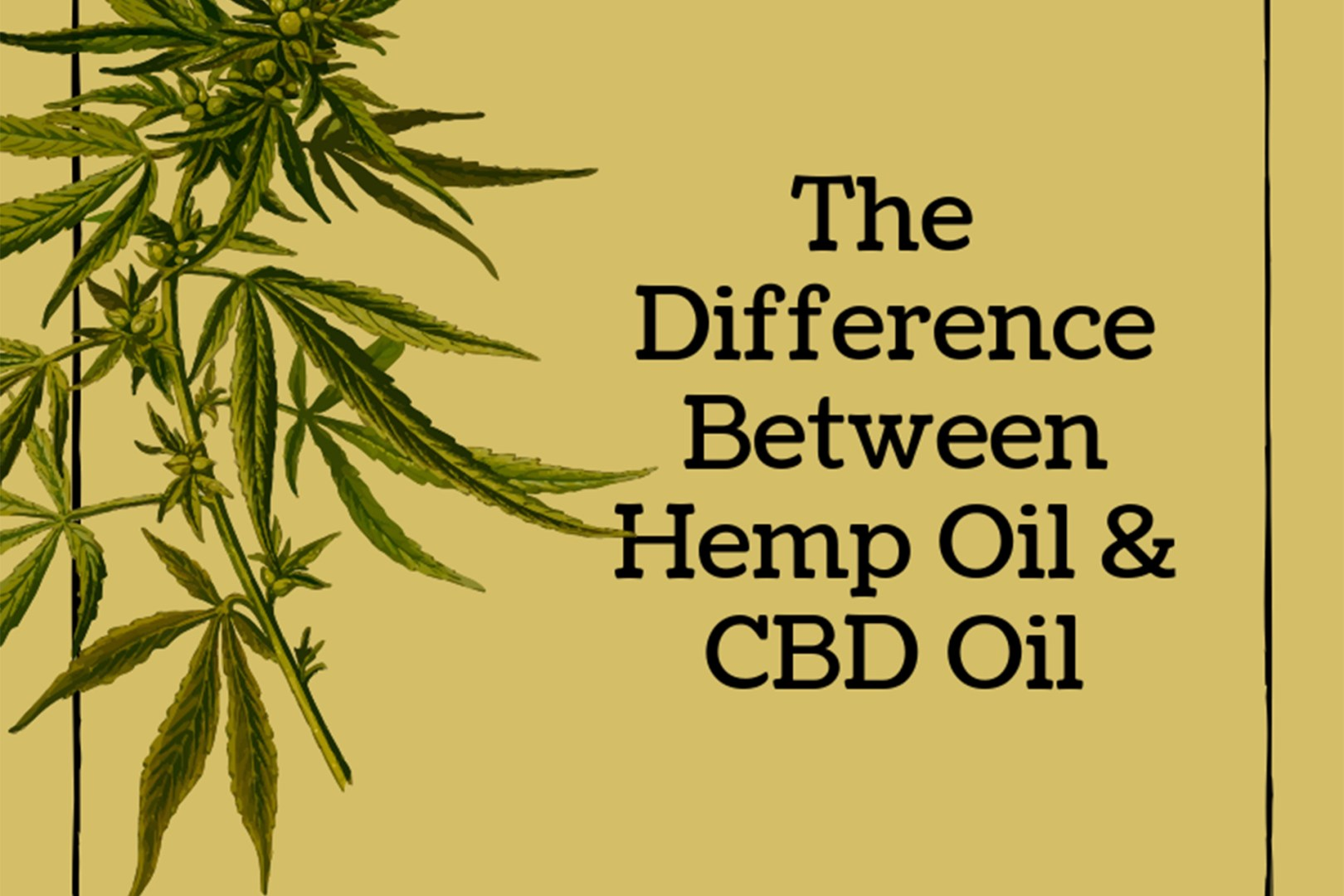 """A graphic illustration of Majiruana leaves with text : The Difference Between Hemp Oil & CBD Oil"""""""