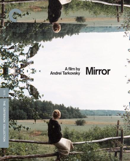 Mirror cover art