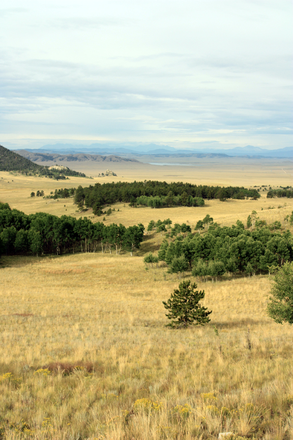 View along Hwy 24 in Colorado