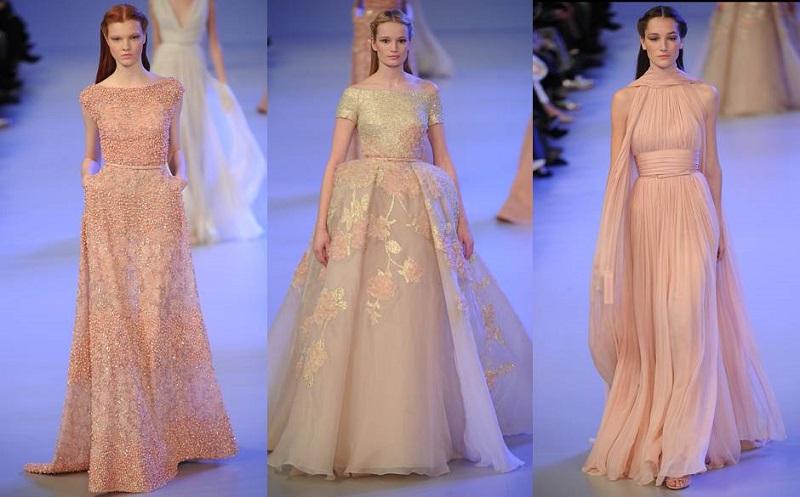 Elena Damy Floral Gowns From Elie Saab SpringSummer