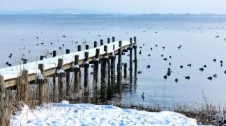 winter-1153740_1280