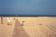Moliets plage | France