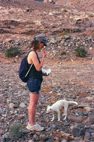 Fuerteventura | Spain