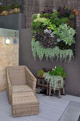 perete vegetal gradina verticala