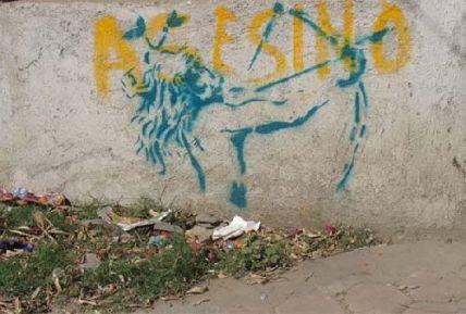 street-art-oaxaca_23