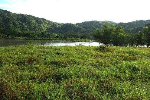 Rio Verde near the community of Paso de la Reina