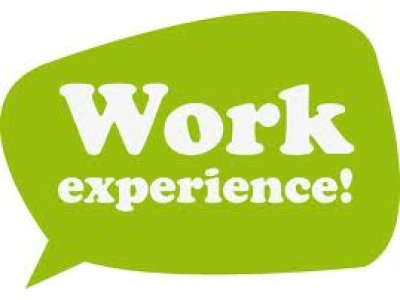 work experience1 - Verbs to describe your experience in your last job
