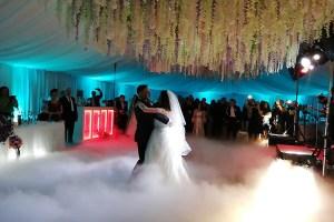 formatii de nunta