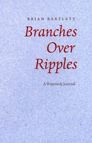 Branches over Ripples.jpg