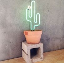 Cactus neon light - Instagram @thecoolhunter_