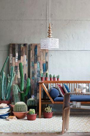 """""""Cactus Love"""" - Photography: Emre Dorter - Styling: Gozde Eker - flickr.com"""