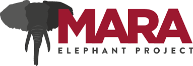 mara elephant project