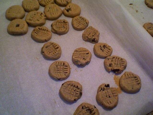 Easy pleasy vegan gluten-free peanut butter chocolate chip cookies