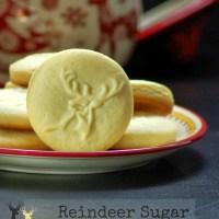 5 Favorite Holiday Cookies