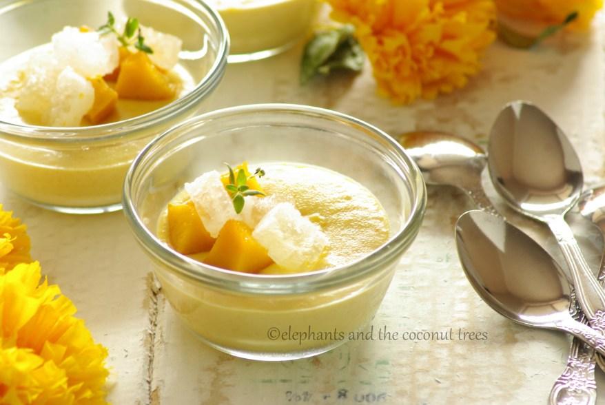 mango pudding 1