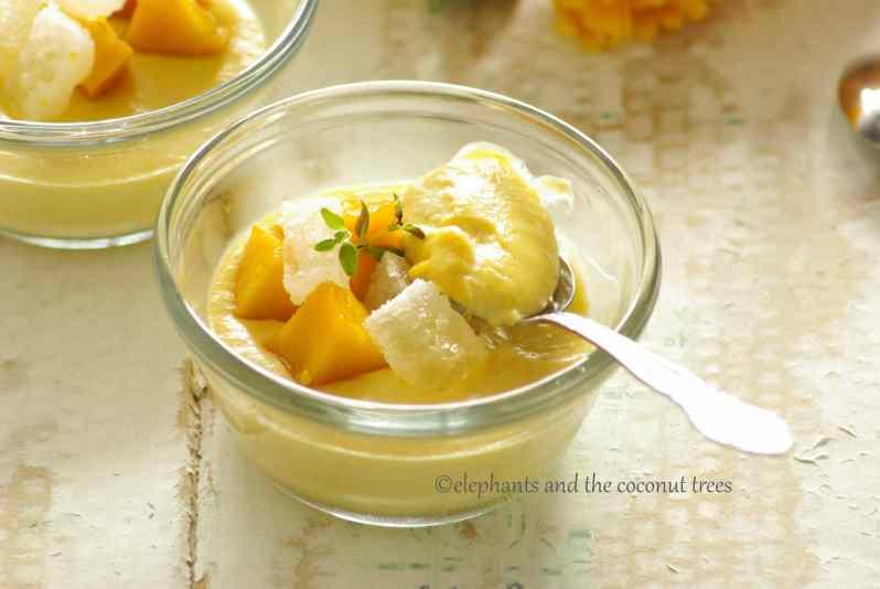 summer mango pudding