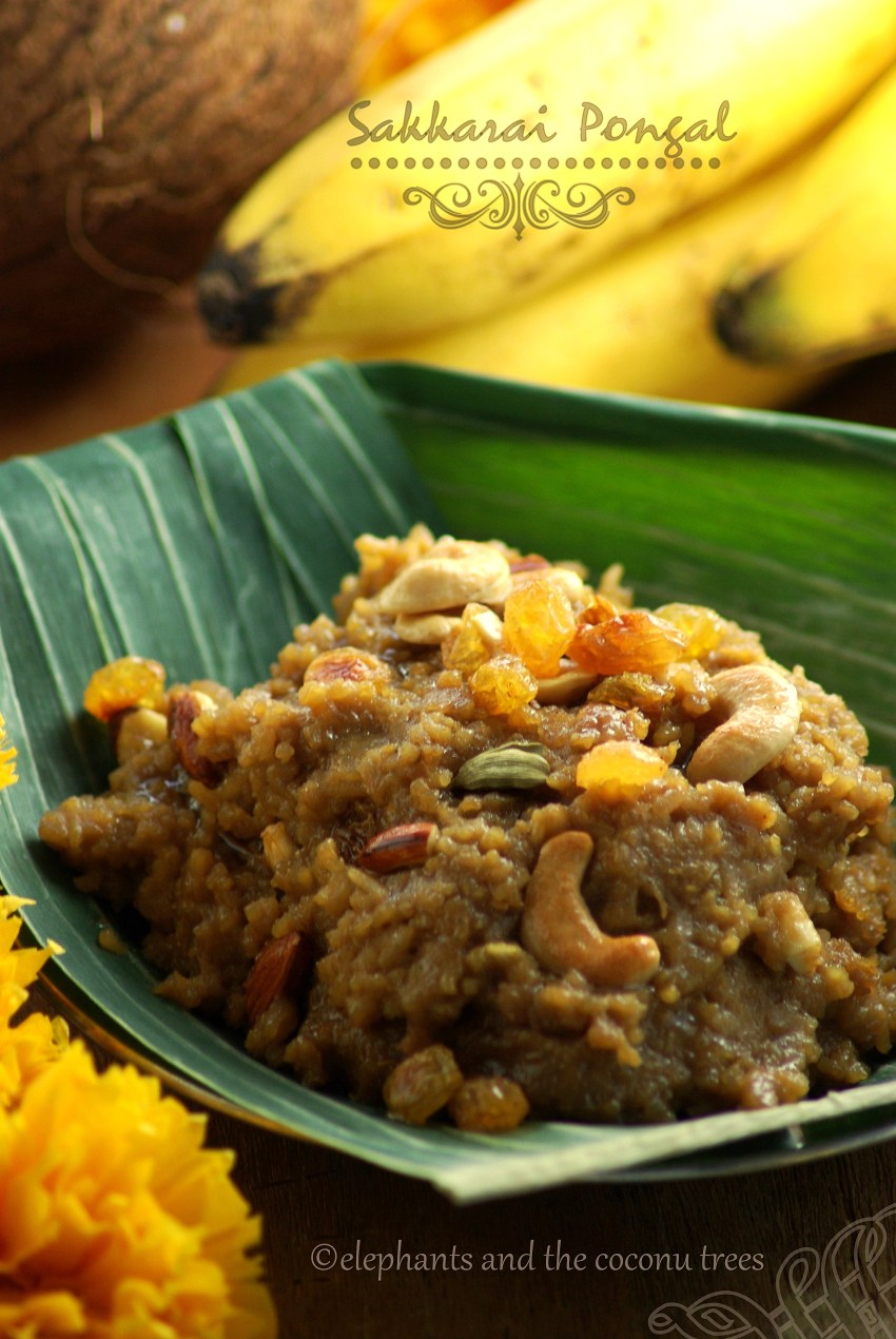 Sweet rice, sakkarai pongal,Indian sweets for all occasions
